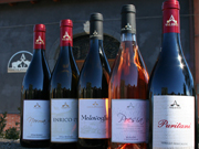 Etna D.O.C. Wines