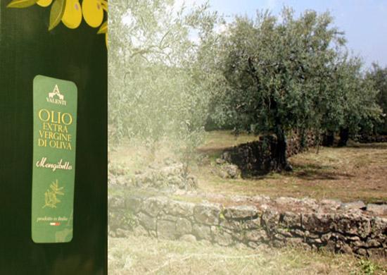 5-Liter Natives Olivenöl Extra - Sofia D.O.P.