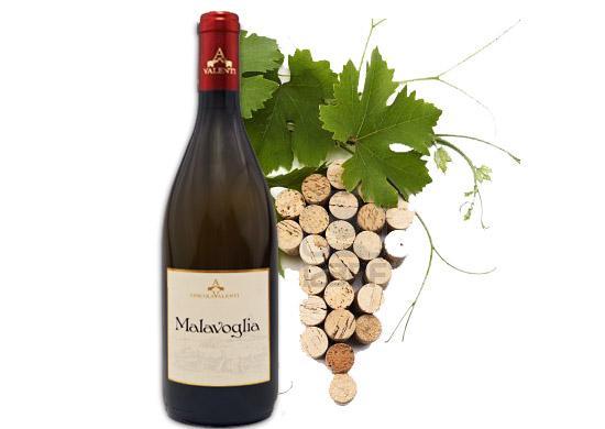 Malavoglia Weißwein