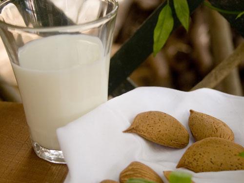 Panetto per Granita o Latte di Mandorla