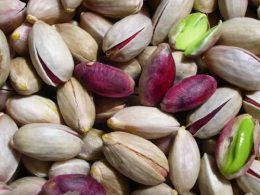 Sicilian in shell pistachio nuts