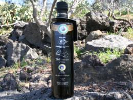 Organic extra virgin olive oil - Il Poeta